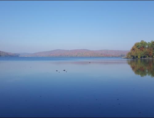 Plan directeur du lac des Piles à Shawinigan (2016-2017)