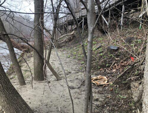 Délimitation de bandes riveraines – Règlements relatifs à la protection des rives, du littoral et des plaines inondables